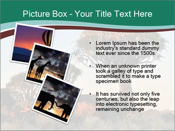 Sunrise at Forest PowerPoint Templates - Slide 17