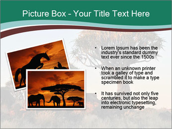 Sunrise at Forest PowerPoint Templates - Slide 20