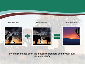 Sunrise at Forest PowerPoint Templates - Slide 22