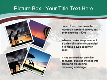 Sunrise at Forest PowerPoint Templates - Slide 23