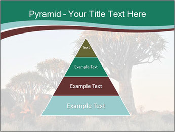 Sunrise at Forest PowerPoint Templates - Slide 30