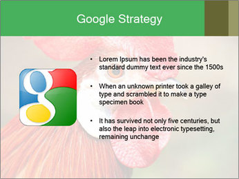 Red Rooster PowerPoint Template - Slide 10