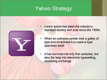 Red Rooster PowerPoint Template - Slide 11
