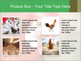 Red Rooster PowerPoint Template - Slide 14
