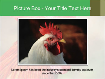 Red Rooster PowerPoint Template - Slide 16
