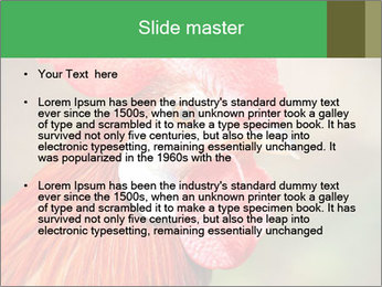 Red Rooster PowerPoint Template - Slide 2