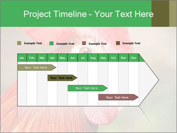 Red Rooster PowerPoint Template - Slide 25