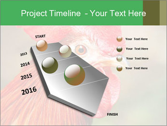 Red Rooster PowerPoint Template - Slide 26