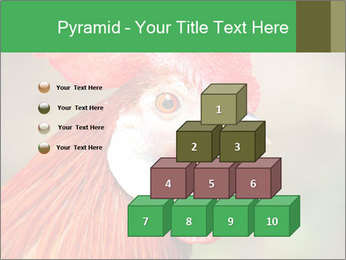 Red Rooster PowerPoint Template - Slide 31