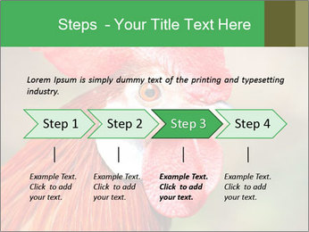 Red Rooster PowerPoint Template - Slide 4