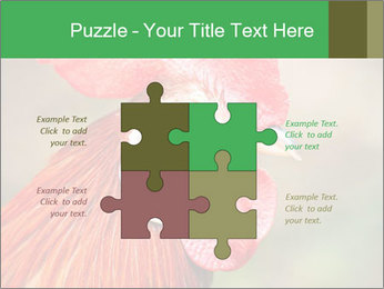 Red Rooster PowerPoint Template - Slide 43