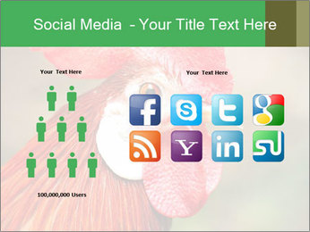 Red Rooster PowerPoint Template - Slide 5