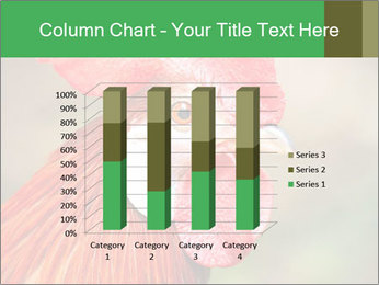 Red Rooster PowerPoint Template - Slide 50