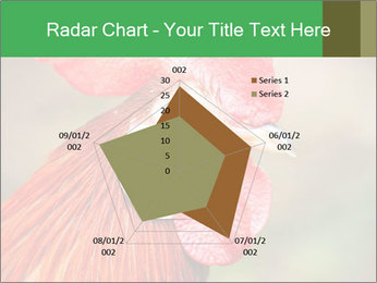 Red Rooster PowerPoint Template - Slide 51