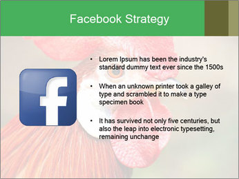 Red Rooster PowerPoint Template - Slide 6