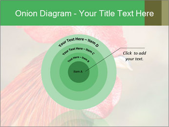 Red Rooster PowerPoint Template - Slide 61