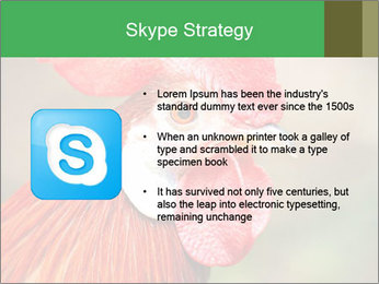 Red Rooster PowerPoint Template - Slide 8
