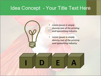 Red Rooster PowerPoint Template - Slide 80