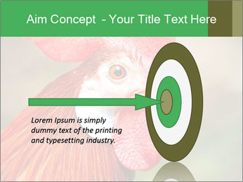 Red Rooster PowerPoint Template - Slide 83