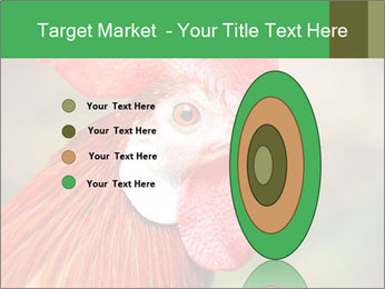 Red Rooster PowerPoint Template - Slide 84