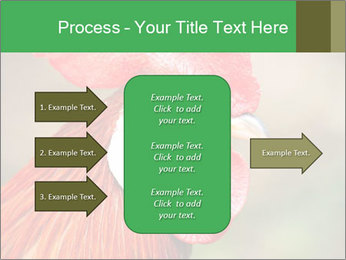 Red Rooster PowerPoint Template - Slide 85