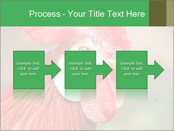 Red Rooster PowerPoint Template - Slide 88
