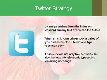 Red Rooster PowerPoint Template - Slide 9