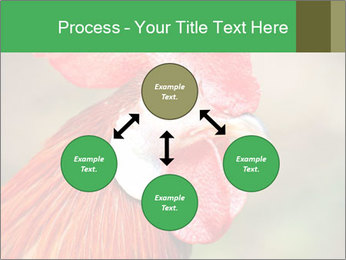 Red Rooster PowerPoint Template - Slide 91