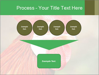 Red Rooster PowerPoint Template - Slide 93