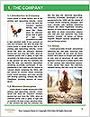 0000092419 Word Template - Page 3