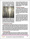 0000092422 Word Templates - Page 4