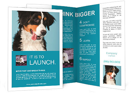 0000092427 Brochure Template