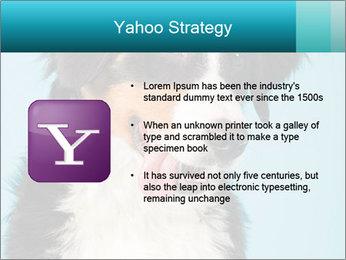 Berner sennen dog PowerPoint Template - Slide 11