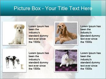 Berner sennen dog PowerPoint Template - Slide 14