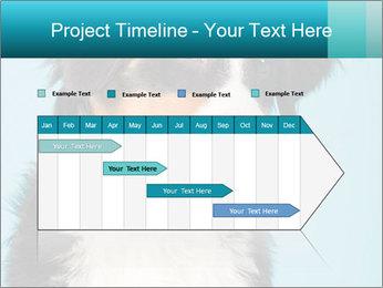 Berner sennen dog PowerPoint Template - Slide 25