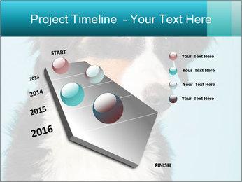 Berner sennen dog PowerPoint Template - Slide 26