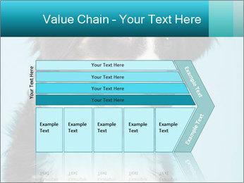Berner sennen dog PowerPoint Template - Slide 27