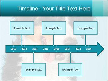 Berner sennen dog PowerPoint Template - Slide 28