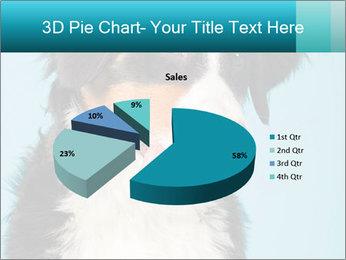 Berner sennen dog PowerPoint Template - Slide 35