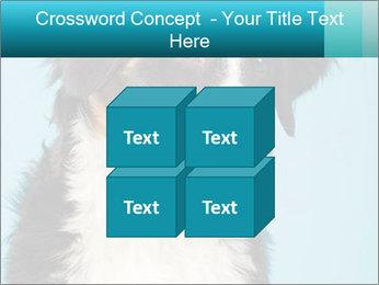 Berner sennen dog PowerPoint Template - Slide 39