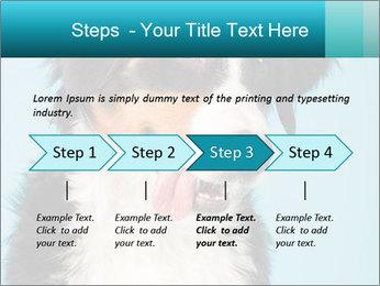 Berner sennen dog PowerPoint Template - Slide 4