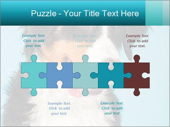 Berner sennen dog PowerPoint Template - Slide 41
