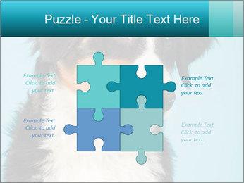 Berner sennen dog PowerPoint Template - Slide 43