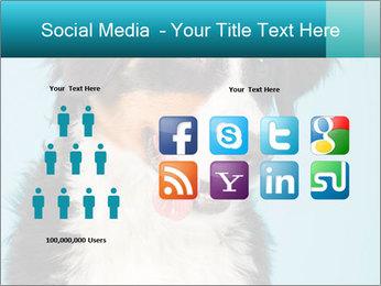 Berner sennen dog PowerPoint Template - Slide 5