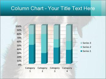 Berner sennen dog PowerPoint Template - Slide 50