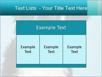 Berner sennen dog PowerPoint Template - Slide 59