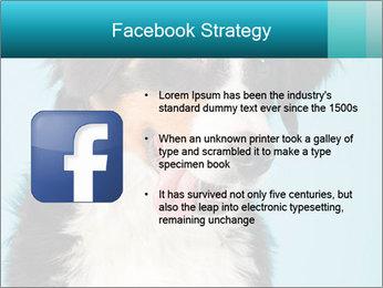 Berner sennen dog PowerPoint Template - Slide 6