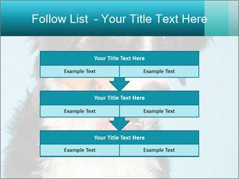 Berner sennen dog PowerPoint Template - Slide 60