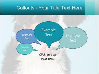 Berner sennen dog PowerPoint Template - Slide 73