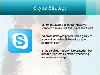 Berner sennen dog PowerPoint Template - Slide 8